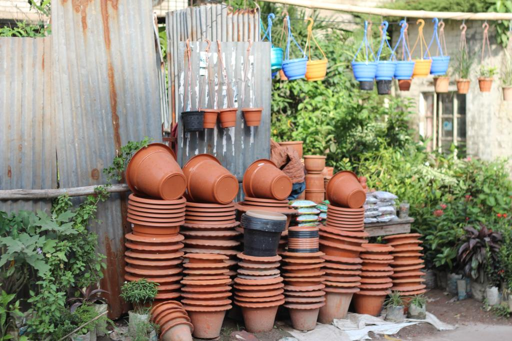 right pots for container gardening